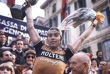 Eddy Merckx / by Jeff DuBridge