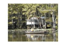 Caddo Lake / Filming Spots