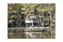 Caddo Lake / Filming Spots