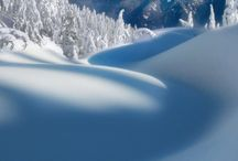 winter / winter/sneeuw.