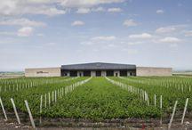 Wineries | Bodega El Portillo / Proyecto: Eliana Bórmida y Mario Yanzón, arquitectos. 2004. Superficie cubierta: 8.500 m2 Capacidad de elaboración: 4.000.000 litros. Valle de Uco. Mendoza, Argentina.