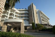 Trendy Palm Beach / Hotel snapshots