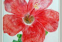 crayon pics