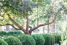 Project secret garden