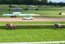 Horse Racing / Germany and France
