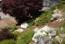 Trädgårdsidéer