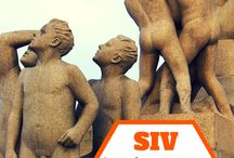 CUSTOM SIV / An Amazing New Way To Stand Out From The Online Crowd... Selective Interactive Video (SIV) Custom SIVs