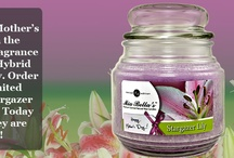 Mother's Day / Celebrate Mother's Day with Stargazer Lily!