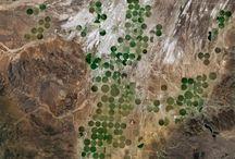 spots in a landscape