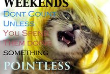 weekend fun / Weekend time, fun,friends and pictures