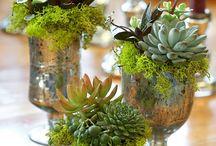 lasiin kukat