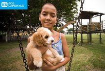 Lapset ja lemmikit / Eläimet ovat tärkeitä lapsille. Monissa SOS-lapsikylissä lapsilla on lemmikkejä tai lapsille pyritään mahdollisuuksien mukaan tarjoamaan tilaisuus viettää aikaa eläinten kanssa. Eläimet osoittavat kiintymystä ja suhtautuvat lapseen kiinnostuneesti. Pitäessään huolta eläimestä lapsi oppii kantamaan vastuuta ja voi kokea olevansa tärkeä eläimelle, jota hän hoitaa ja ruokkii. Lapsen voi olla myös joskus helpompi puhua eläimille kuin ihmisille.