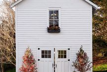 Fall/Halloween / by meghan
