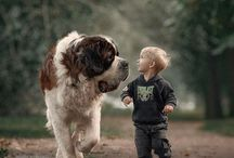 Cute dogs and children