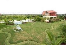 Best Landscape Designer , Counsult And Devloper in Ahmedabad / Ahmedabad Landscape Development,Garden Products , Gardening in Ahmedabad. gardening products , lotus Gardening Ahmedabad.