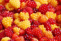 Beautiful fruits & things
