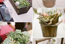 planters diy