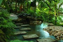 Garden and Ponds