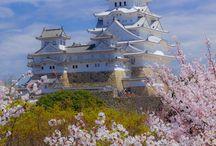 Wonder Japan