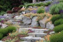 Schody ogród