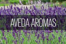Aveda Aromas / We're known for our many wonderful aromas, from calming Shampure to uplifting Beautifying. Which is your favorite?
