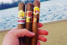 Best cigars to buy
