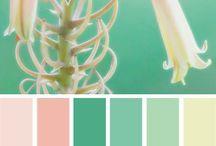 Color and Decor