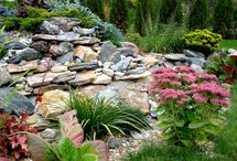 Landscaping Ideas / by Linda Finni