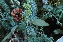 Wreath / 季節のお花で作成したナチュラルなリースの作品集/Natural flower wreath