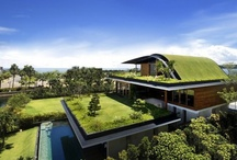 Eco Friendly Homes / Anything environmentally safe and natural. Striving towards being green!