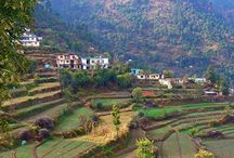 A Delhi Shimla Manali Tour Packages in this summer / At last full customize Delhi Shimla Manali Packages Tours we get full tour cost. To visit hill station like Himachal Delhi Shimla Manali Tour packages is the best for every aspect.