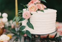 Wedding Cake / A special cake to celebrate the beginning of our eternity / by Ashley Sumner