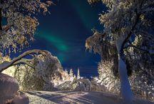 season_winter / by Rachel T