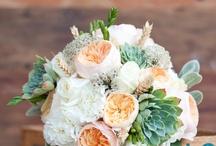 austin rosses wedding