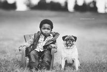 vintage / retro dogs