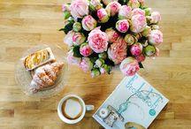 Lieblingsblumen / Nachmittagskaffee ....☕️