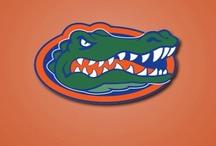 Florida Gators / Sports / by Elizabeth Harris-Whitfield