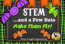 Teaching- Bats