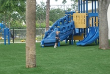 Perfect Playgrounds  / Built for long lasting durability, Southwest Greens synthetic turf is the perfect low maintenance, water conserving surface for high traffic areas and the pounding kids can dish out.