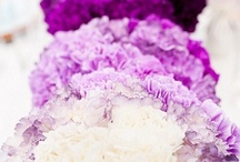 Hot Color Trends - Ombre / Ombre is the hottest trend right now.  It's like wildfire and it's spreading to all facets of wedding planning from invitations to flowers, tablecloths. An Ombre effect creates a gradual warming with the colors making them a little warmer than just a singular color by itself.