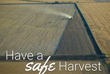 #harvest16