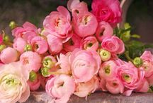 Fresh Flower Jewels......... / Beautiful, Colourful, Fragrant, Mother Nature