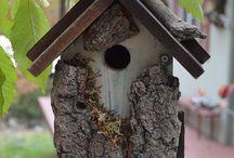 Cabane d'oiseaux
