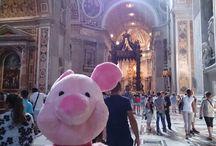 piglet travel