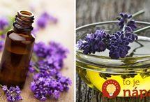 bylinky  a oleje
