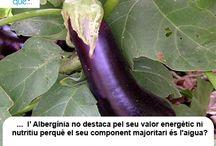 Albergínia / Berenjena / Curiositats sobre l'albergínia / Curiosidades sobre la berenjena