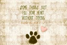 *Love my dogs*