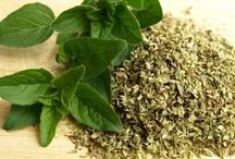 Essential Oil of Oregano / 100%  Pure Essential Oil of Oregano. MINIMUM  86%  CARVACROL Oreganum Vulgare Heracleoticum-Hitrum is the variety of Oregano. (There are many varieties of Oregano-only the Greek Oregano gives the highest rates of Carvacrol) Carvacrol is the main ingredient of Oregano Oil. The higher the content of Carvacrol in Oregano Oil the more effective it is. If the Oregano Oil is low in Carvacrol then it will not be as effective regardless of the dosage usable.