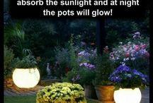 Light up pots / Garden