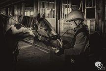 Тренировочный деть в конном клубе White Stable. / Тренировочный деть Татьяны Ветровой ( 9 лет) в клубе White Stable!